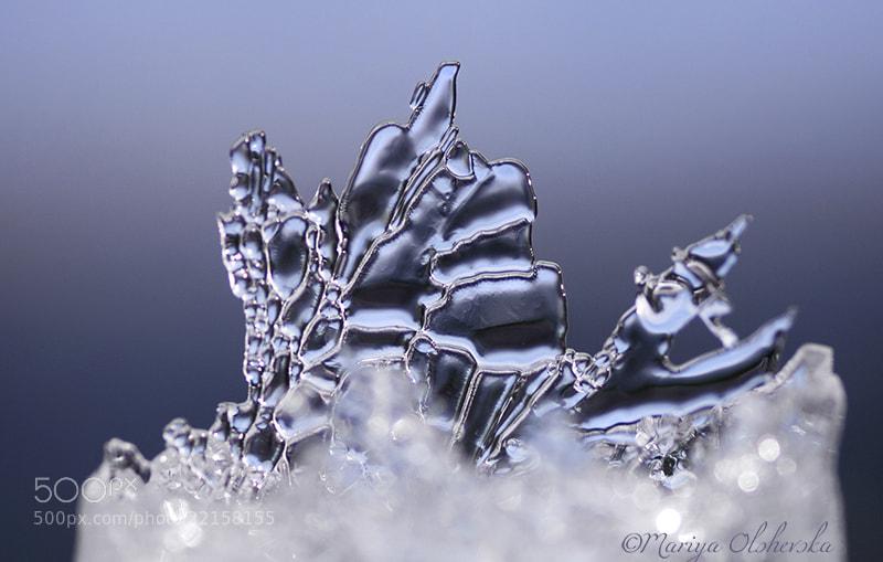 Photograph Ice Anomaly by Mariya Olshevska on 500px
