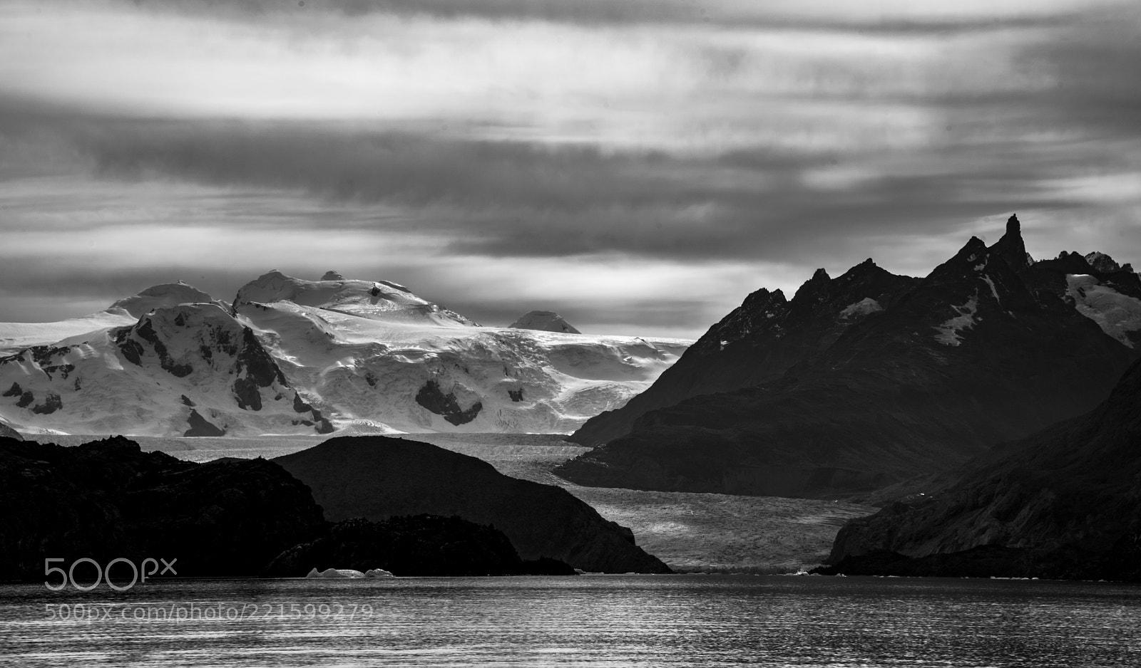 Lago Grey Glacier B&W
