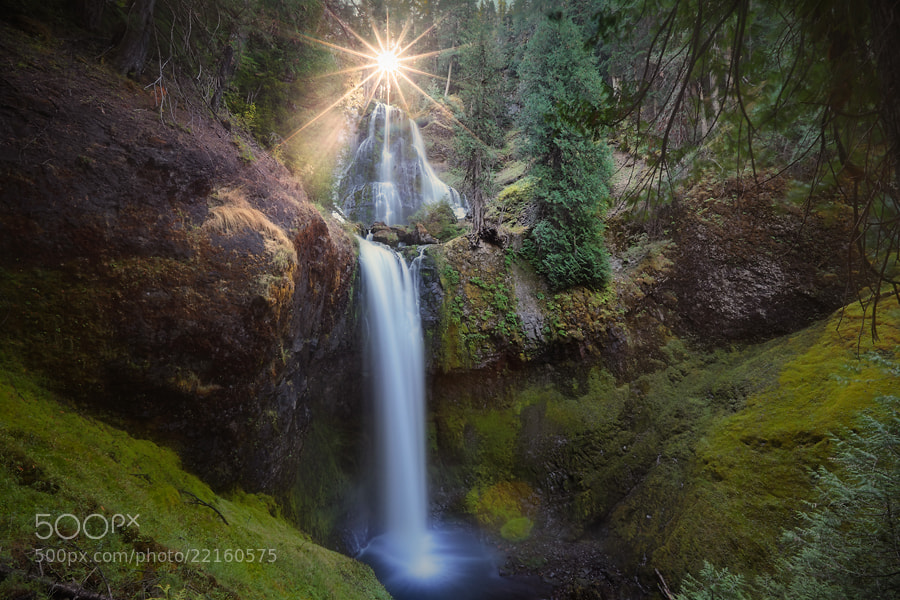 Photograph Hope by Tula Top on 500px