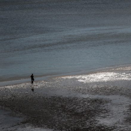Lonely walk at Low tide