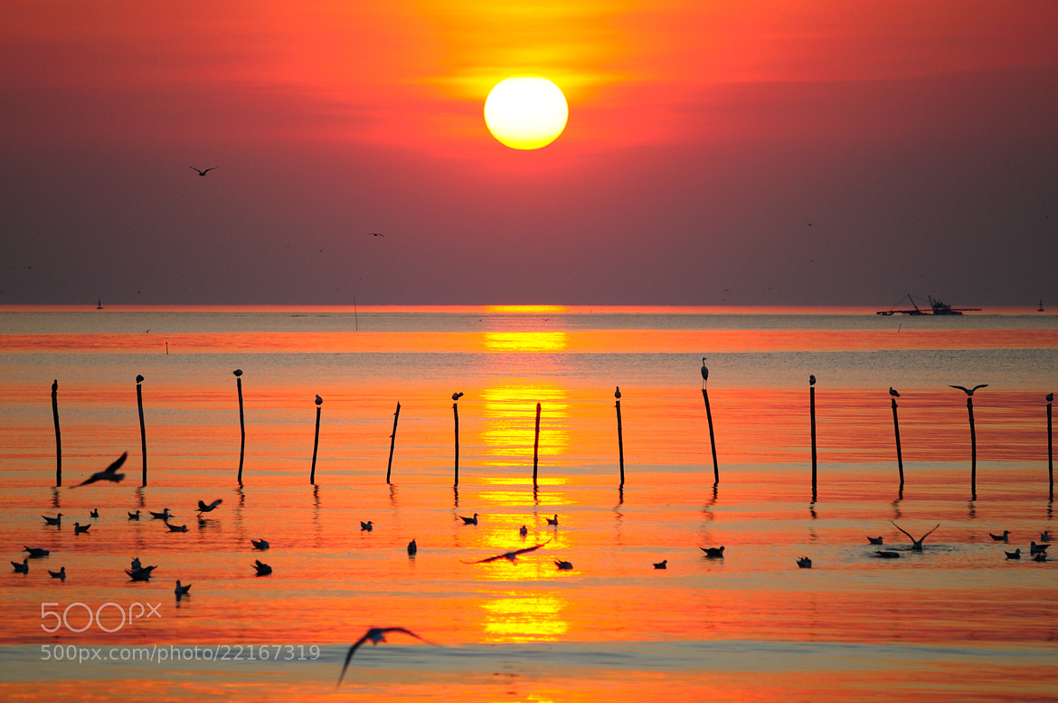 Photograph Bang Pu Sunset by Photos of Thailand .... on 500px