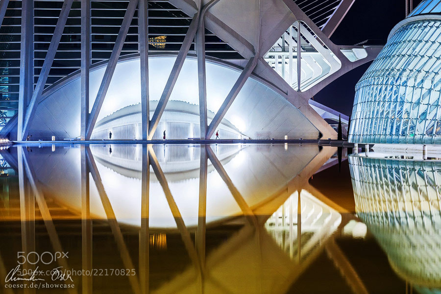 Photograph City of Arts and Science 5 by Christian Öser on 500px
