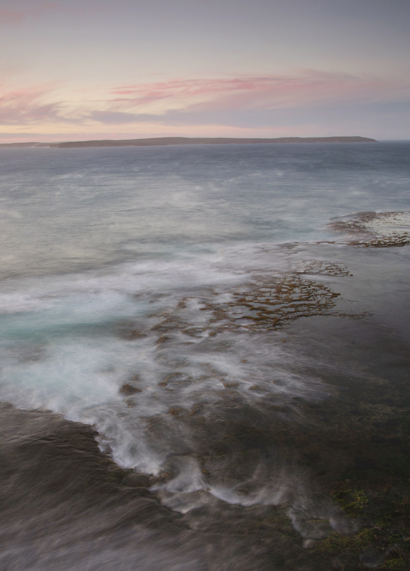 Photograph Long Reef by Gav McPherson on 500px
