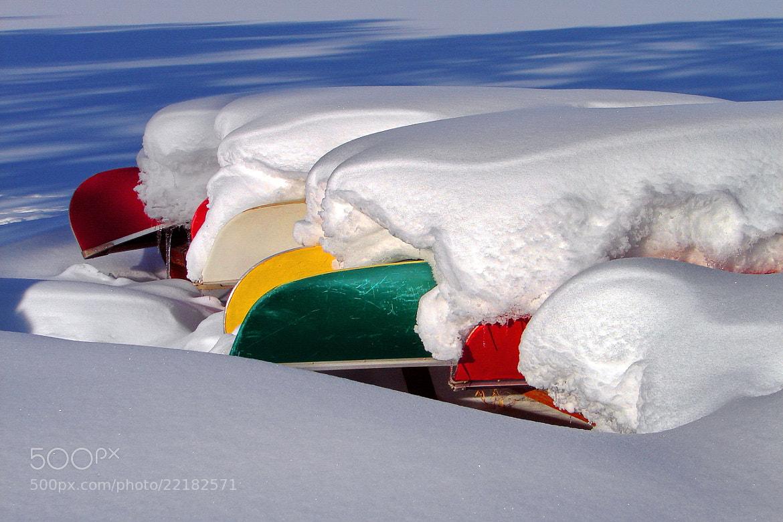 Photograph winter colors by Andrzej Pradzynski on 500px