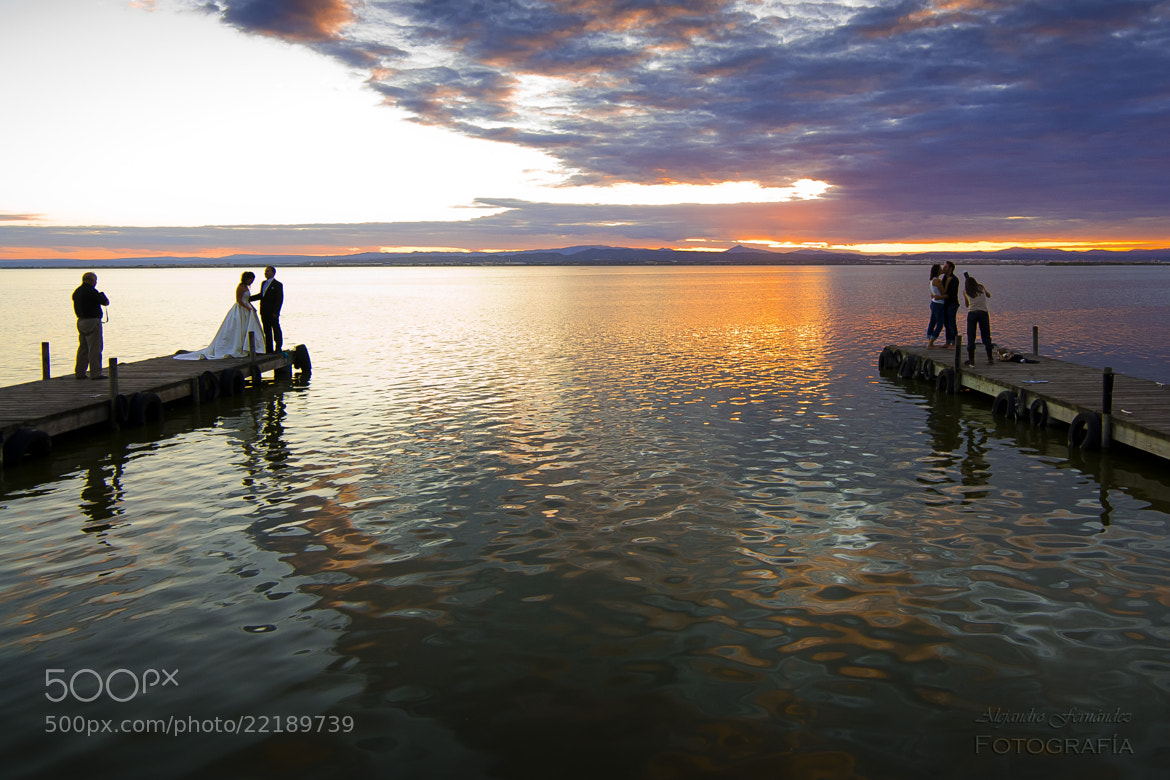 Photograph La Albufera (Valencia - Spain) by Alejandro Fernández on 500px