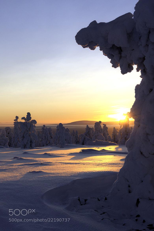 Photograph Sunset in Lapland by Jukka Lehtinen on 500px