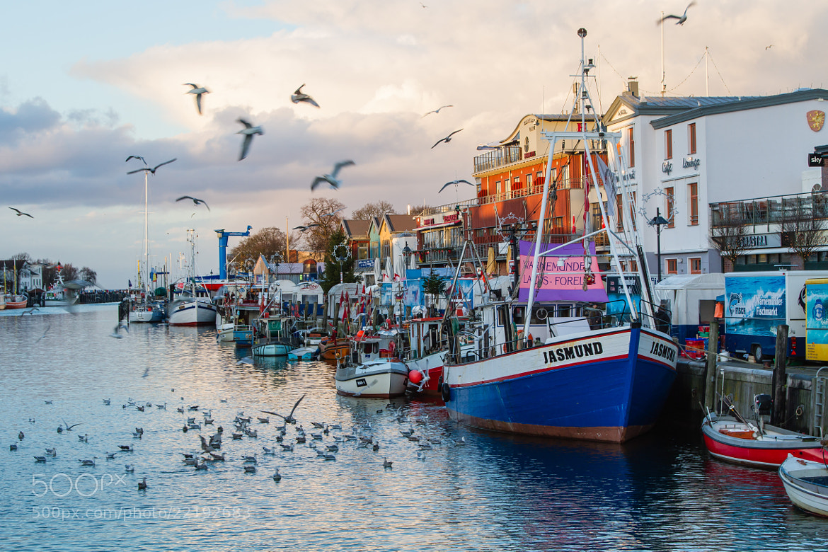 Photograph Fish market by Markus _ on 500px