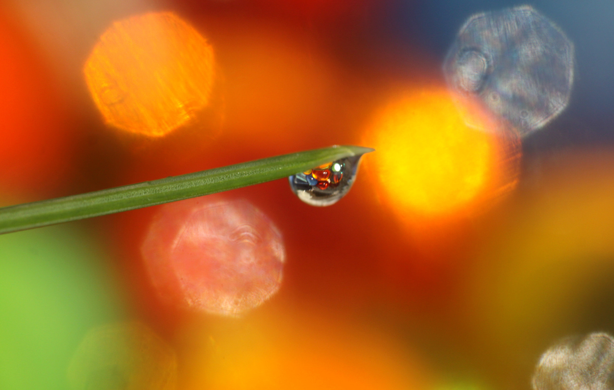 Photograph Drop colored by Sandrine Fernandes on 500px
