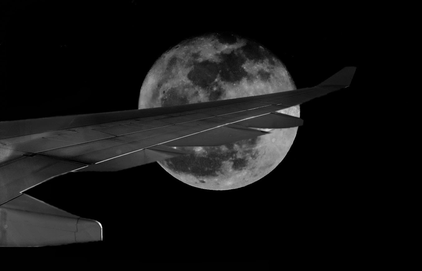 Photograph Moon's riding high by André Quartin Santos on 500px
