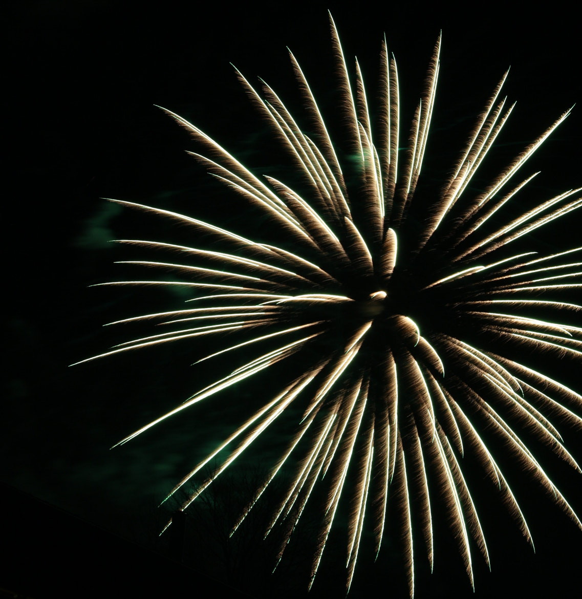 Photograph Happy New Year !! 2013 by Florian B. on 500px