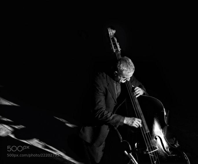 Photograph Assolo Di Contrabbasso by mario pignotti on 500px