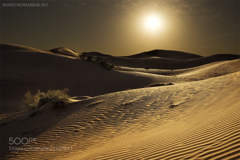 Photograph A tough life by Hamed Musharbak on 500px