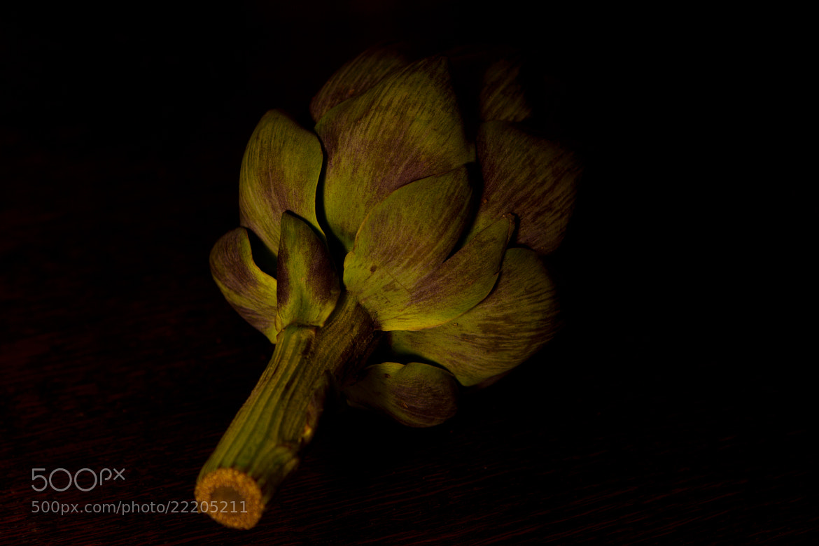 Photograph Artichoke I by Annie Macfhay on 500px