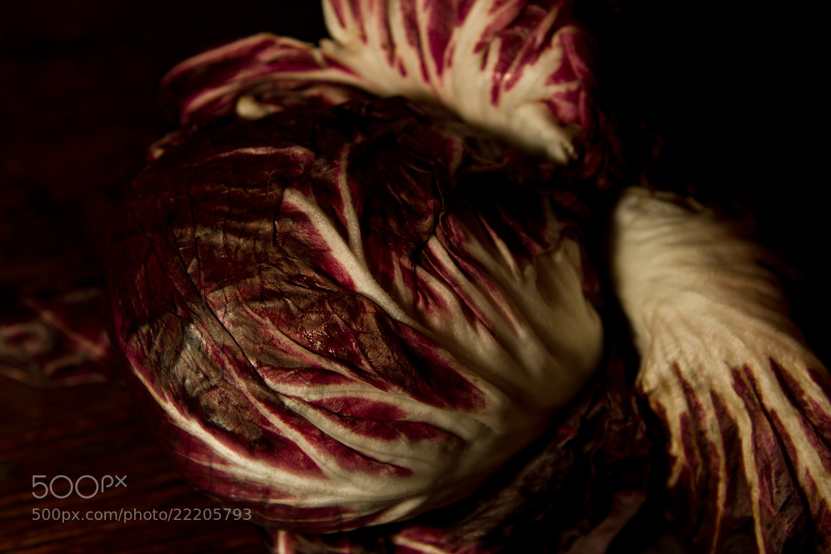 Photograph Radicchio by Annie Macfhay on 500px