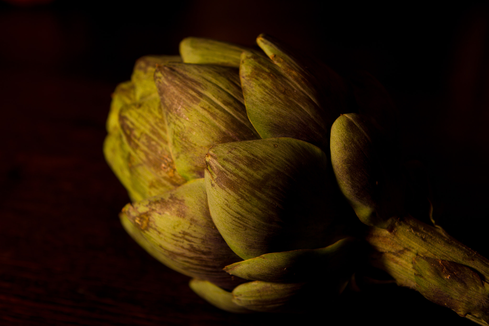 Photograph Artichoke III by Annie Macfhay on 500px