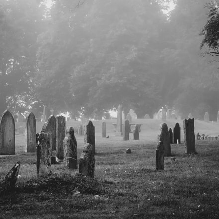 Annapolis Royal cemetery in the morning fog