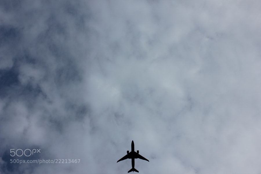 The Plane by Alexandre Roty (AlexRoty)) on 500px.com