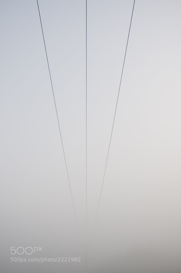 Whilst waiting for the sun to get up and burn off the fog I spotted these phone lines disappearing into the distance. Liked the lines. You can just make out the pole at the end.