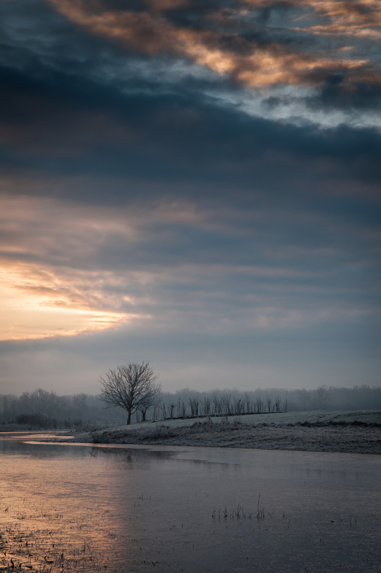 Photograph winter morning by Ivan Draganjac on 500px