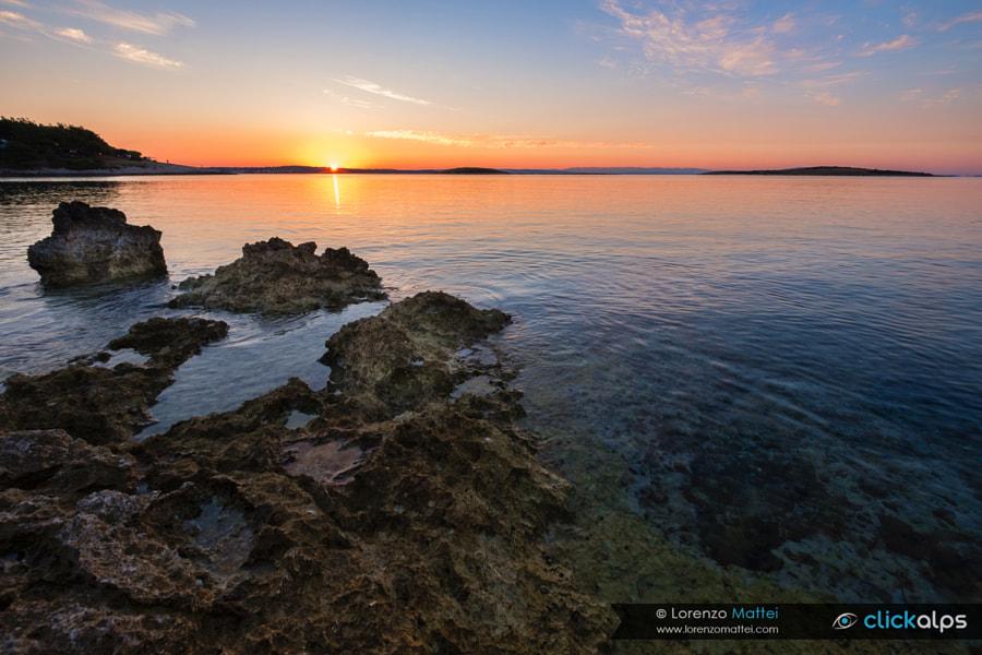 Wild sunrise, автор — Lorenzo Mattei на 500px.com