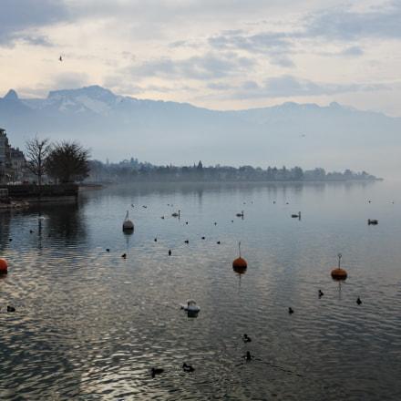 Waadt - Vevey on Lake Geneva