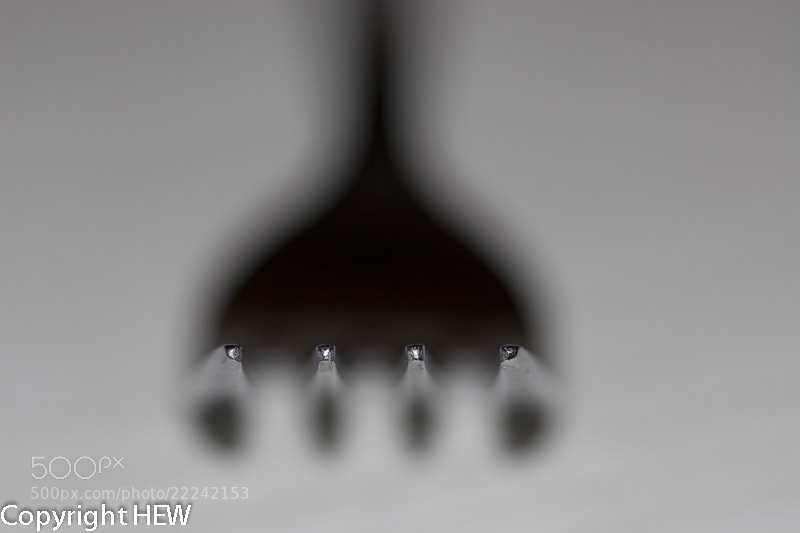 Photograph Fork with blurred background by hew nikon on 500px
