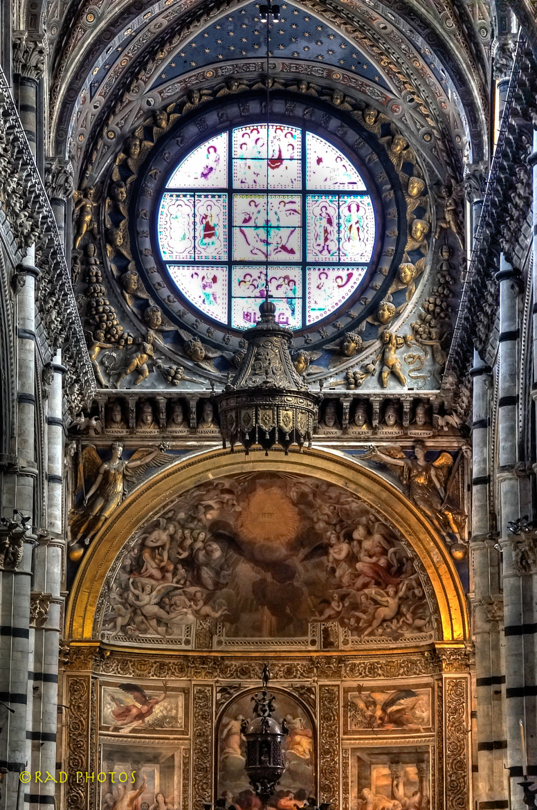 Photograph Siena Duomo, Italy by RadPhotos  on 500px