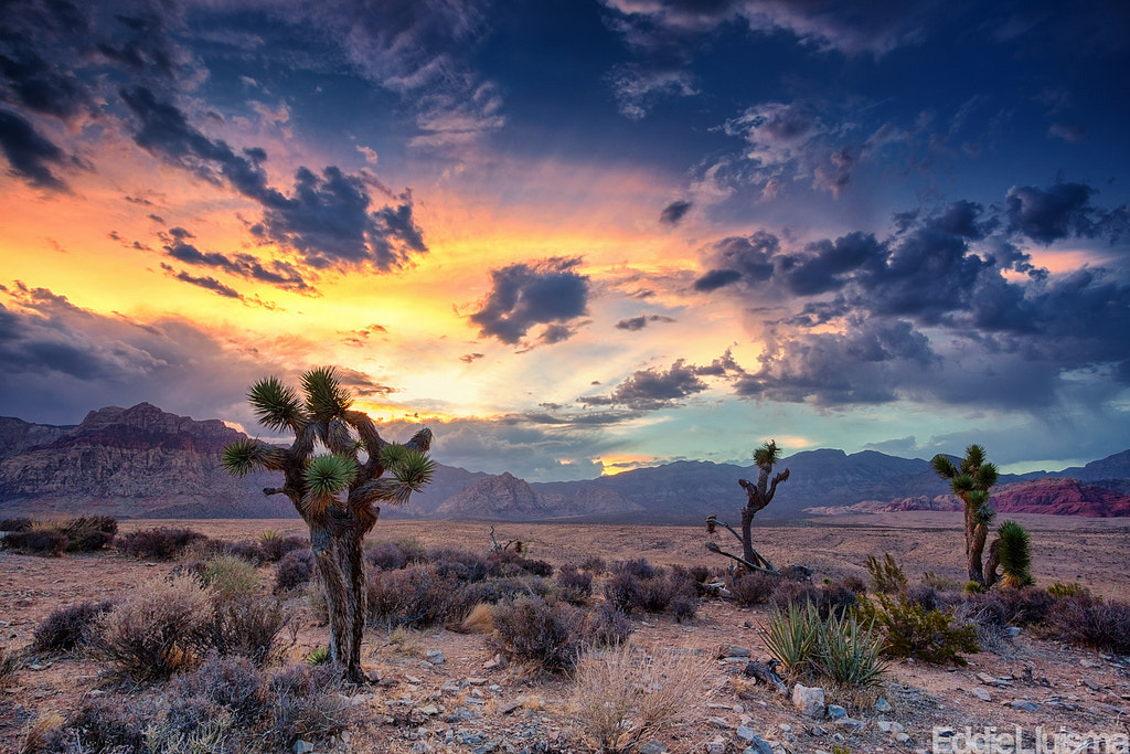 Photograph Desert Monsoon by Eddie Lluisma on 500px