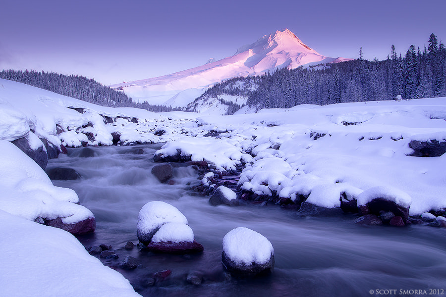 Photograph Winter Majestic by Scott  Smorra on 500px