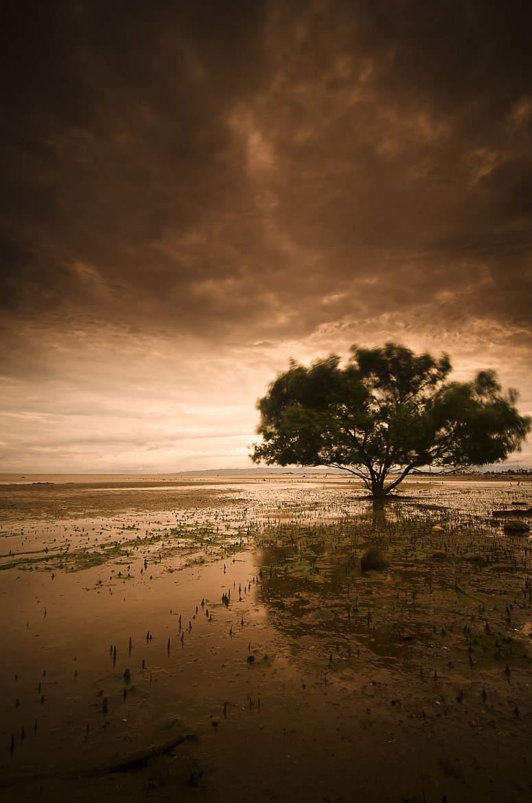 Photograph Tsunami was here by 'Jibron' Andi on 500px
