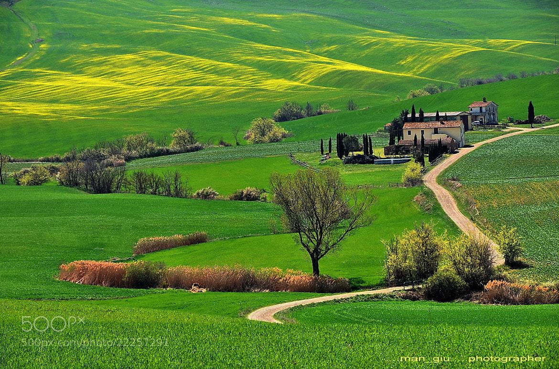 Photograph Tuscan's land by Giuliano Mangani on 500px