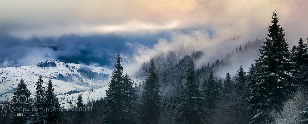 Photograph The Carpathians by Irene Mei on 500px
