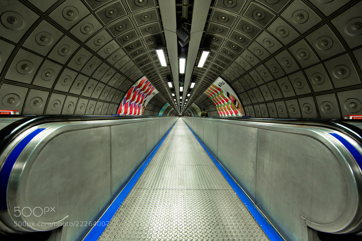 Photograph Leading Lines by Roland Shainidze on 500px