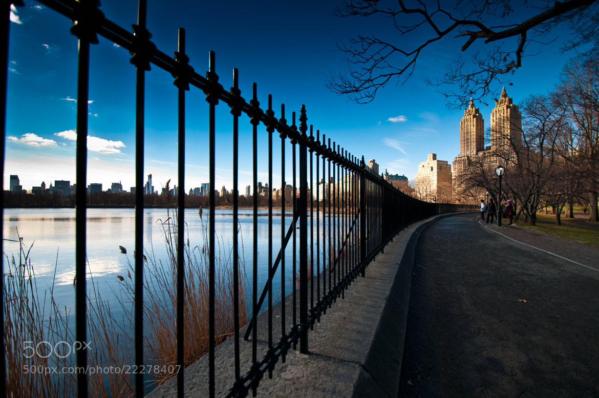 Photograph Central Park -NY by OastinLive on 500px
