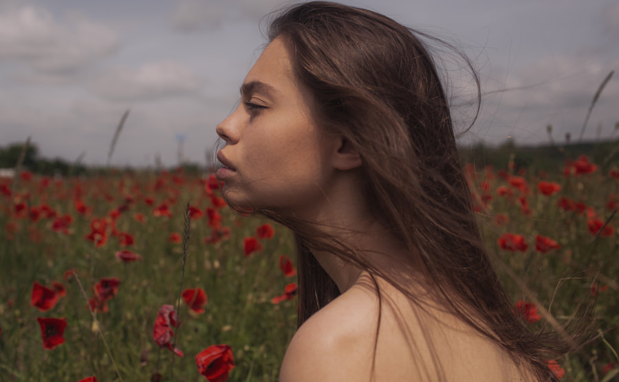 flower by Marta Syrko on 500px.com