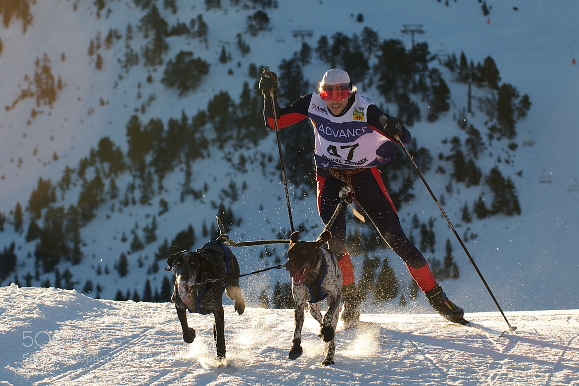 Photograph Skijoring by Jordi Oller Macia on 500px