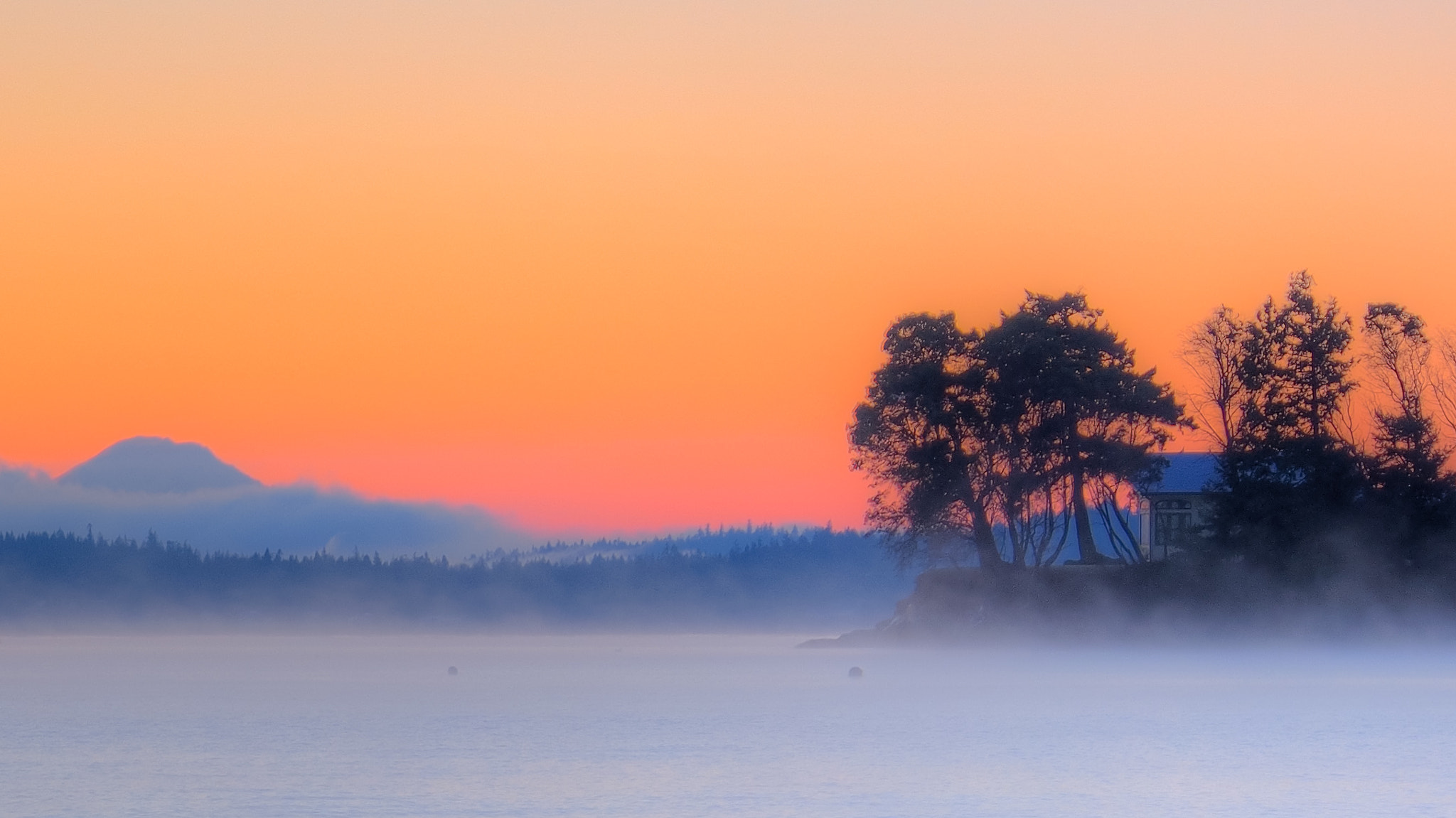Photograph Just Peachy by Pat Teglia on 500px