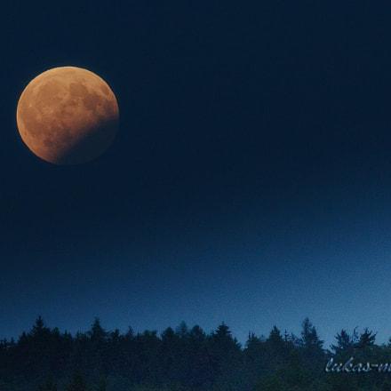 Full Moon... ?