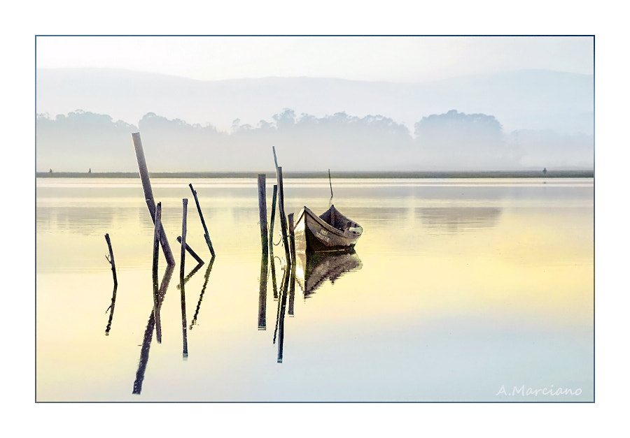 Photograph Alone by António Marciano on 500px