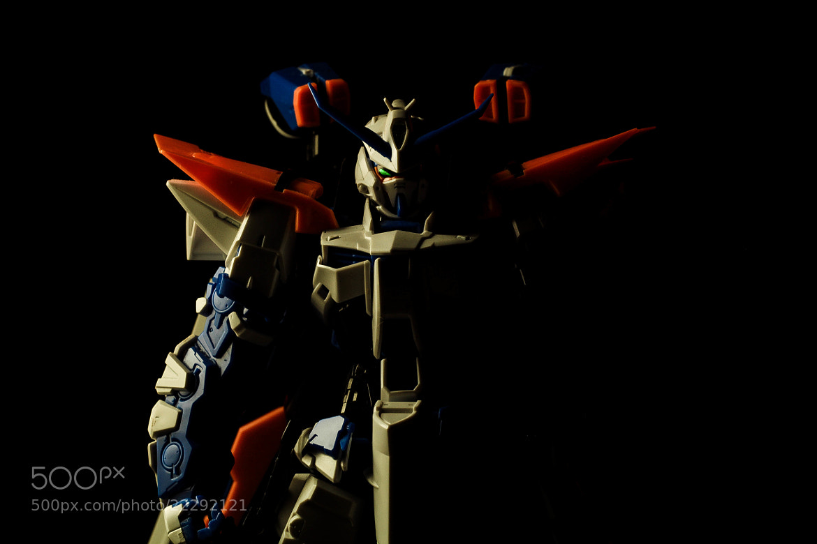 Photograph 1/100 MG Gundam Astray Blue Frame Second Revise   by Jan Renor Curioso on 500px