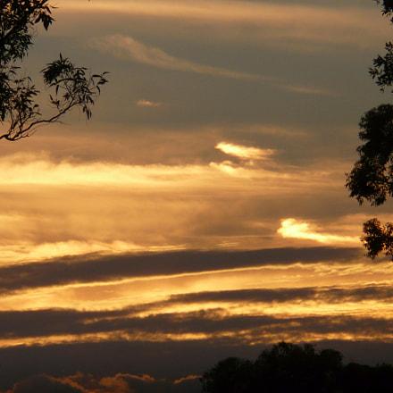 Belrose bushland sunset