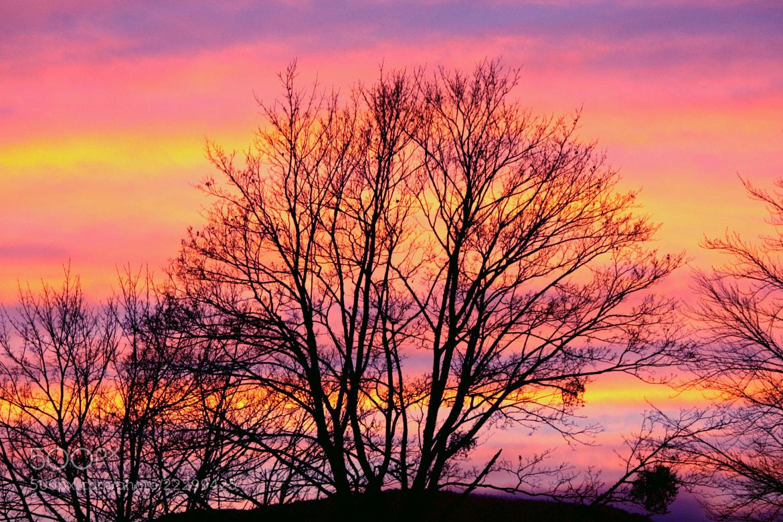 Photograph Magnificent Sunset by EWA CIEBIERA on 500px