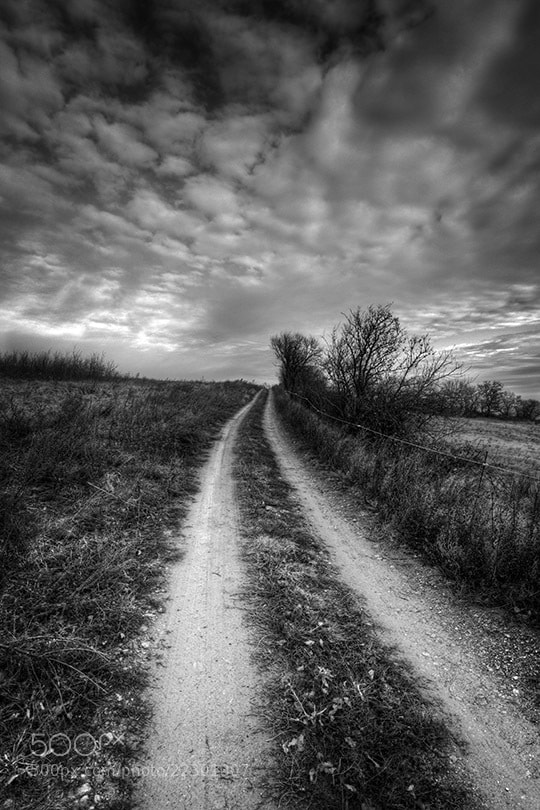 Photograph Way Up by Michael Hansmann on 500px