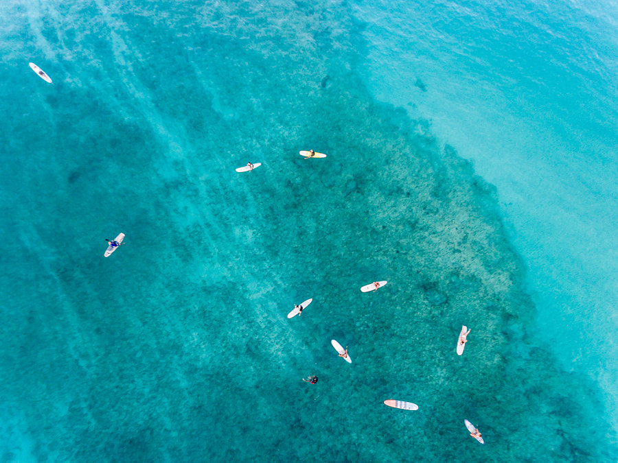 Aerial view of a group of surfers, Waikiki Oahu by Kelly Headrick on 500px.com