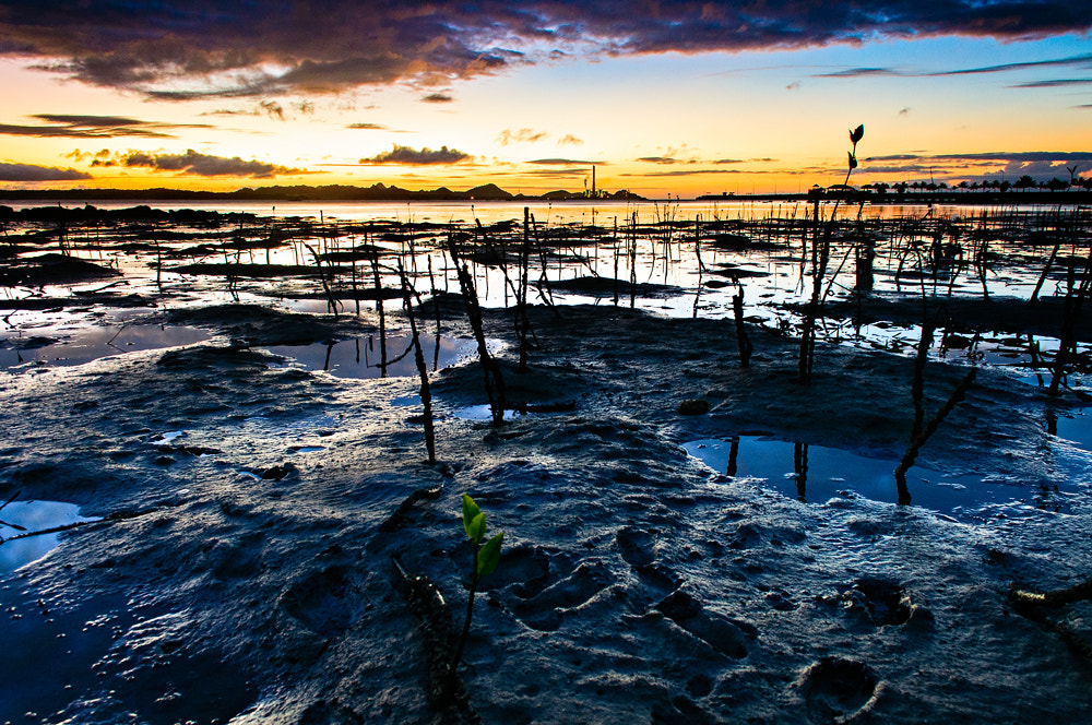 Photograph Mud Planet by Alain Cortes on 500px