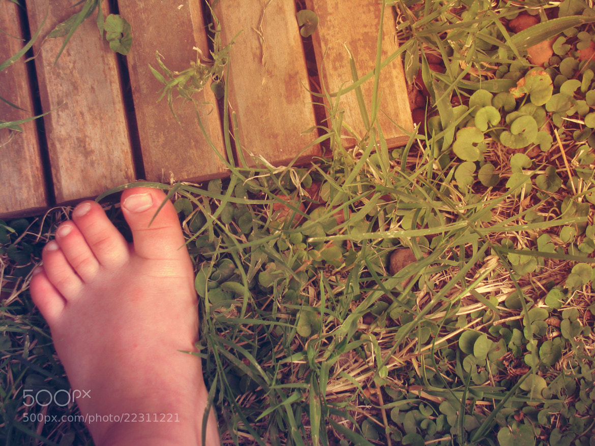 Photograph Flesh, Grass and Wood by Nidia Carrillo on 500px