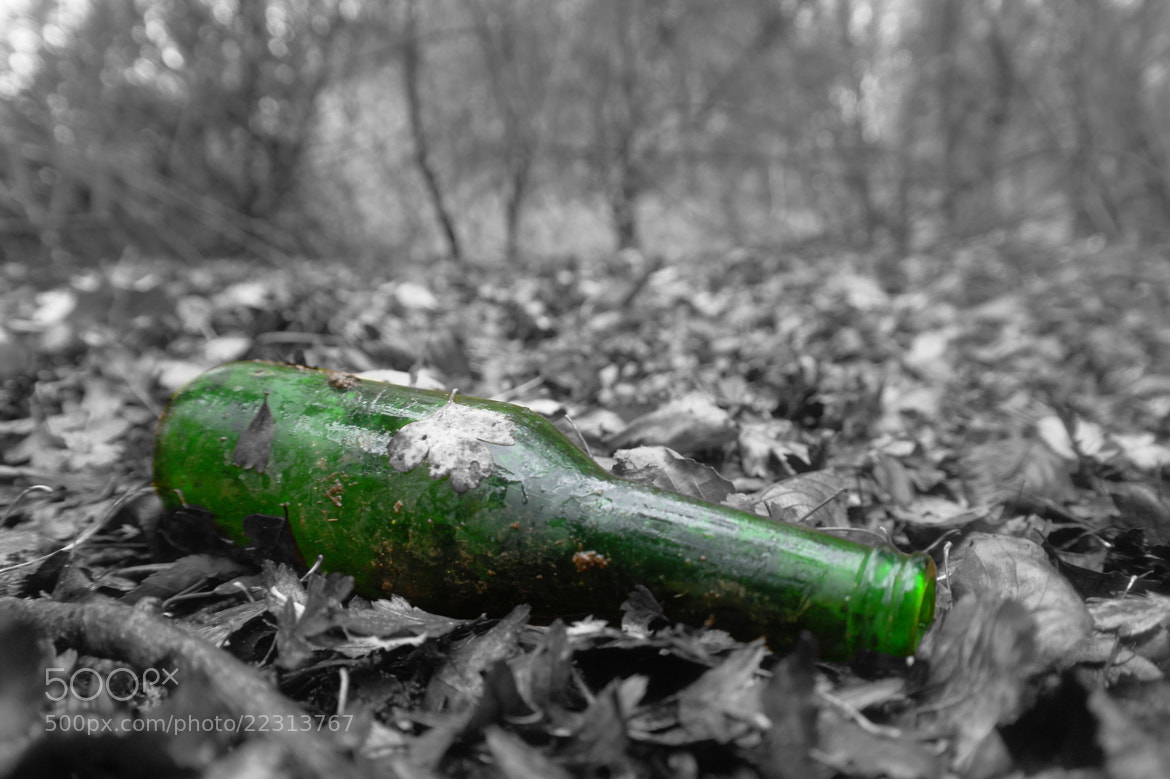 Photograph Green Bottle by Adam Lay on 500px