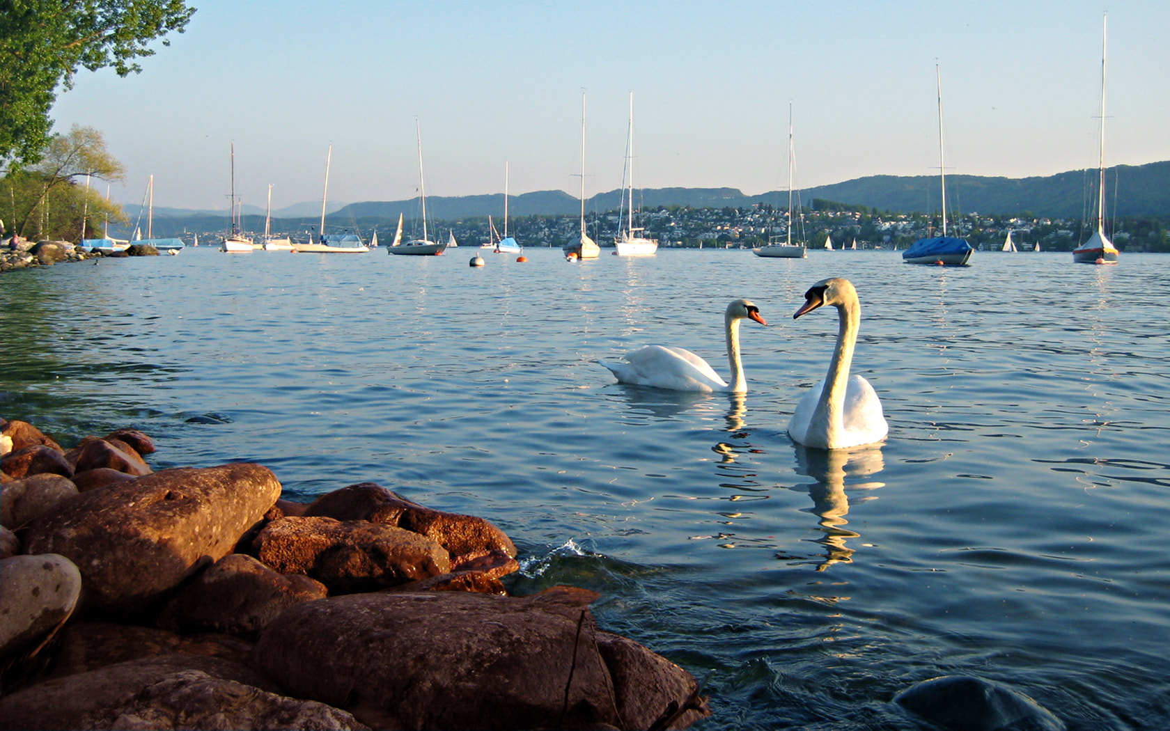 Photograph Lake Zurich by Tom Anders on 500px