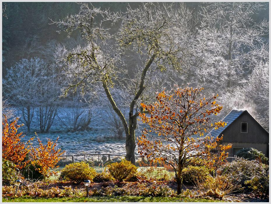 Photograph Frost by Eva  Krejci on 500px