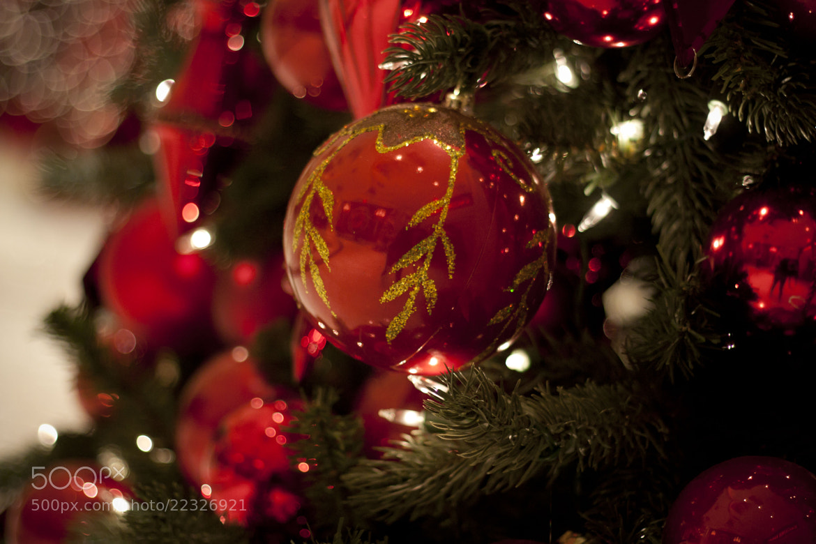 Photograph Ornament by Mitchie Rodriguez on 500px
